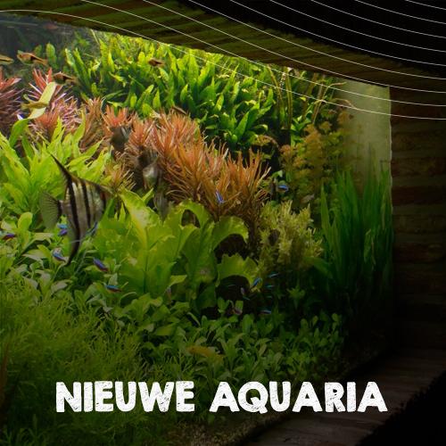 Nieuwe aquaria aquarium