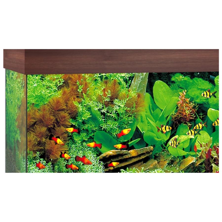 Juwel Aquarium Rio 125 Led - Donkere houtkleur