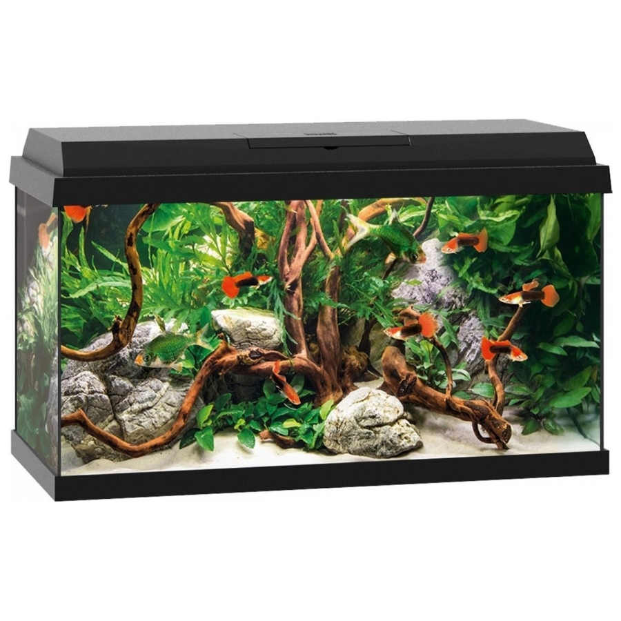 Juwel Rekord Aquarium - 110L - Zwart - 80 x 35 x 45 cm
