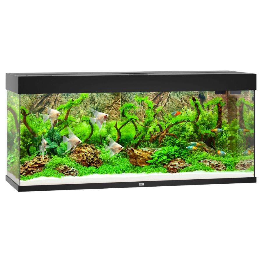 Juwel Aquarium Rio 240 Led - Zwart