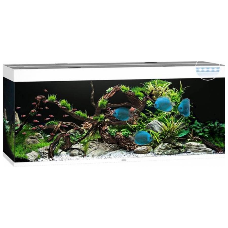 Juwel Aquarium Rio 450 Led - Wit