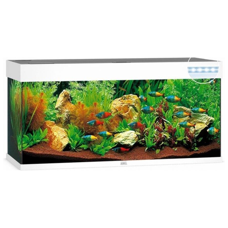 Juwel Aquarium Rio 240 Led - Wit