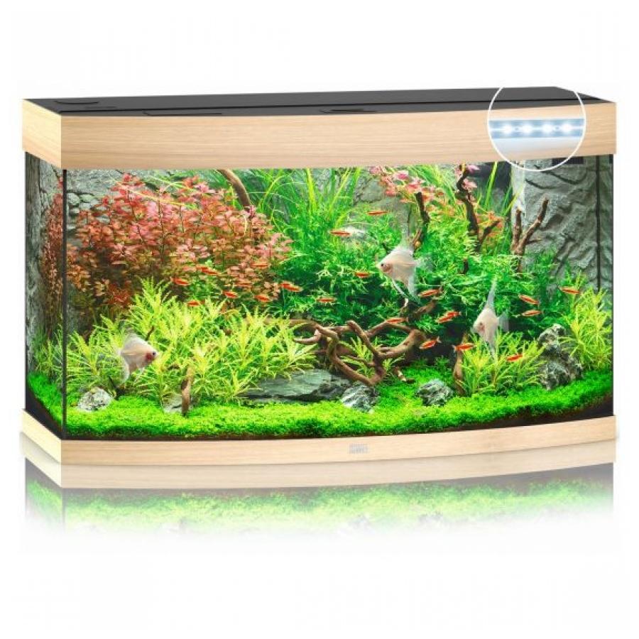 Juwel Aquarium Vision 180 Led Licht hout