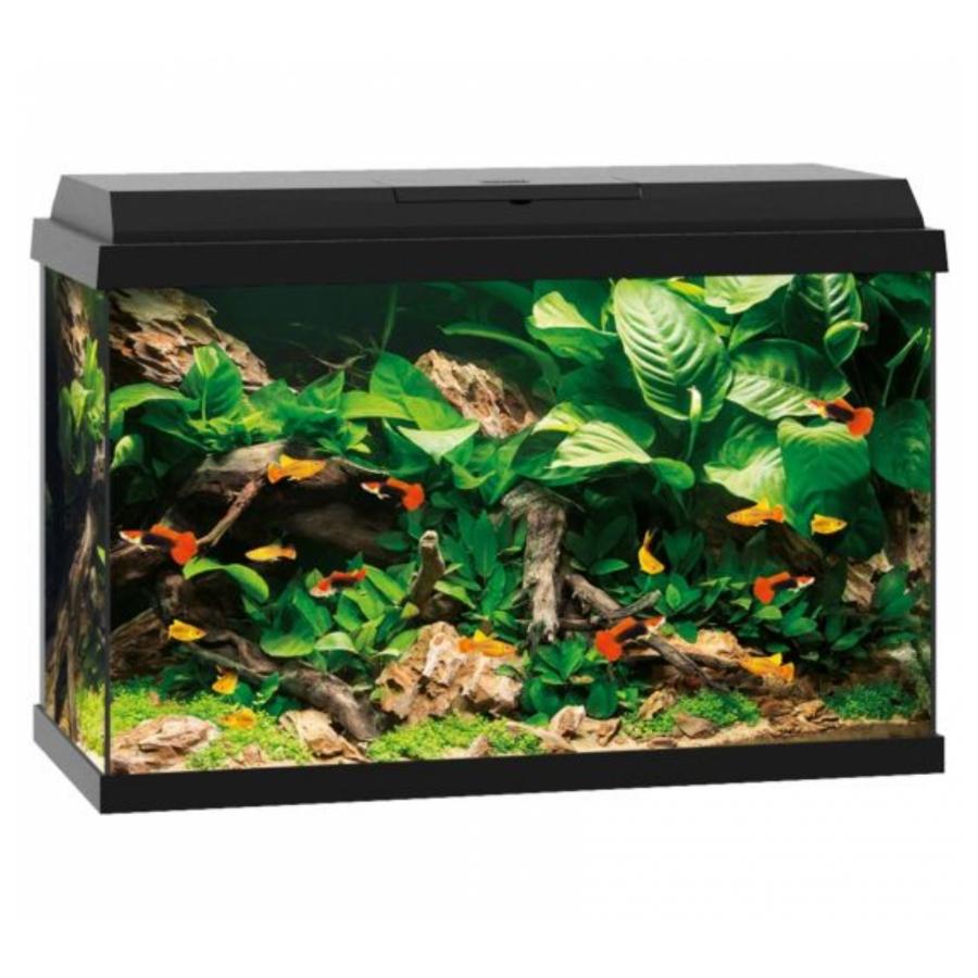 Juwel Rekord - Aquarium - 70 liter - Zwart