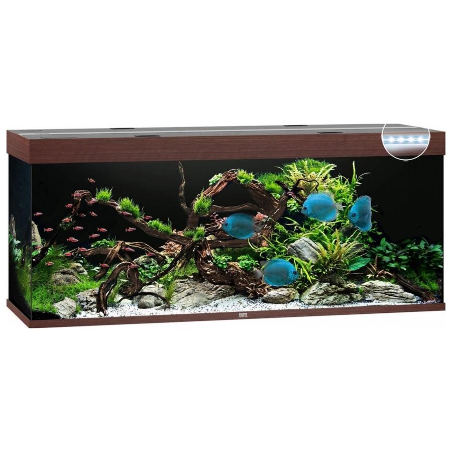 Juwel Aquarium Rio 450 met LED-verlichting, pomp, filter, verwarming zonder onderkast donker hout