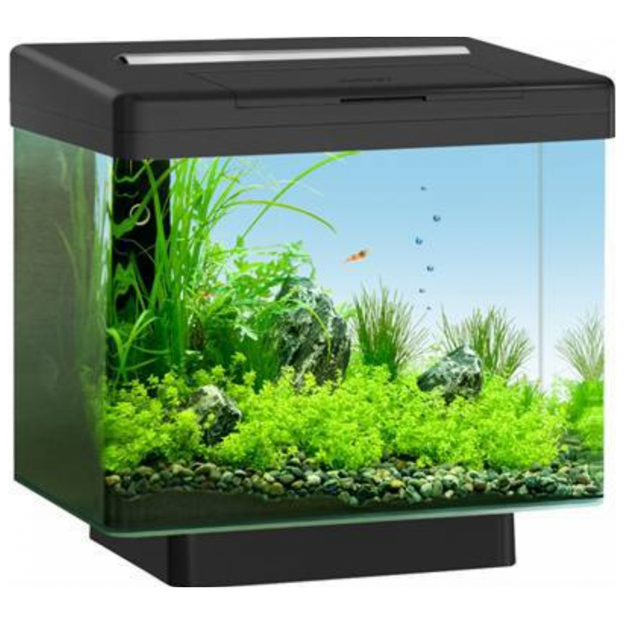 Juwel Aquarium Vio 40 Zwart Met Led 40