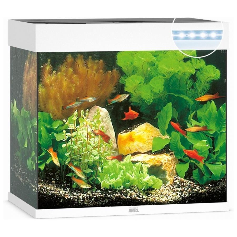 Juwel Aquarium Lido 120 Led Wit