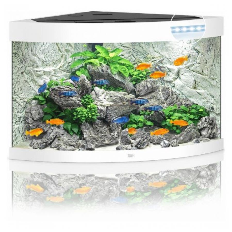 JUWEL Trigon 190 SBX Aquariumcombinatie met LED-verlichting, filter, verwarming en onderkast, Wit
