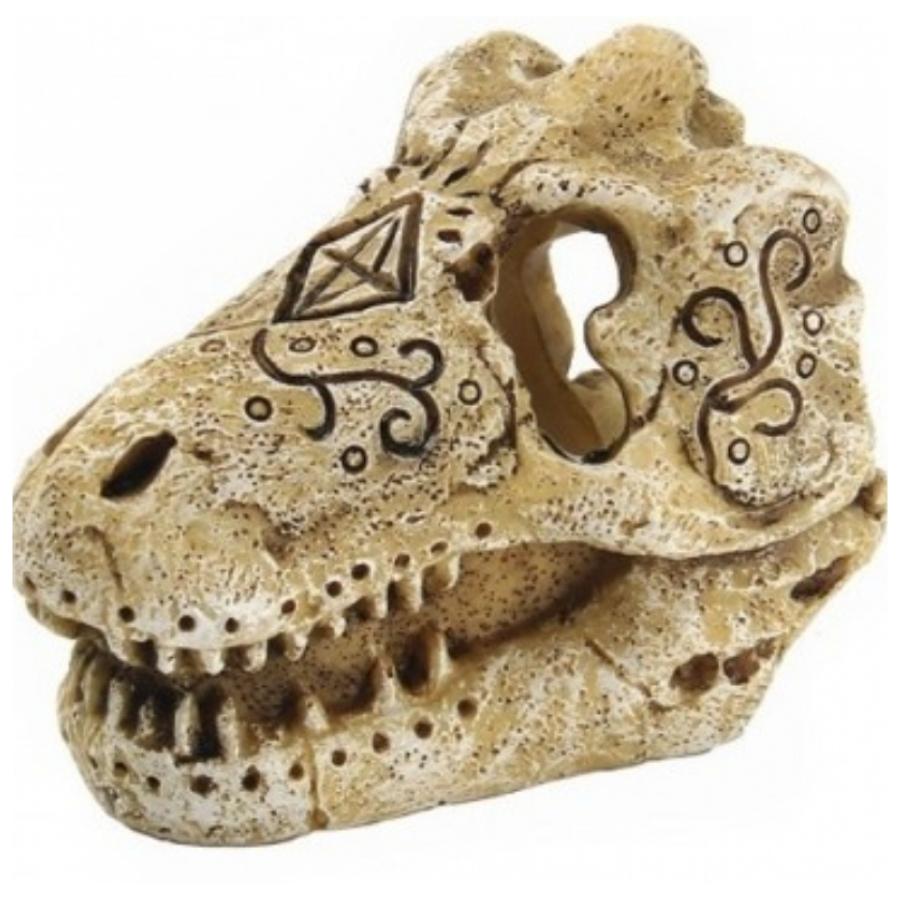 Superfish skull t Rex