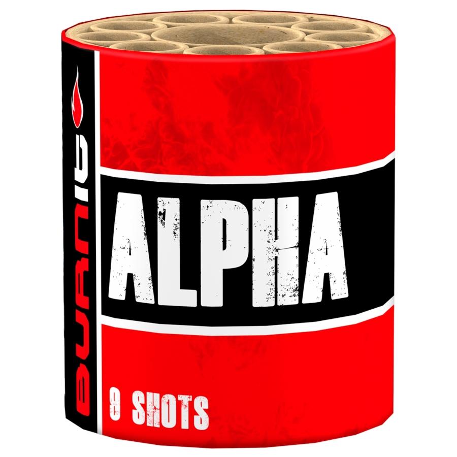 BurnIT! Alpha