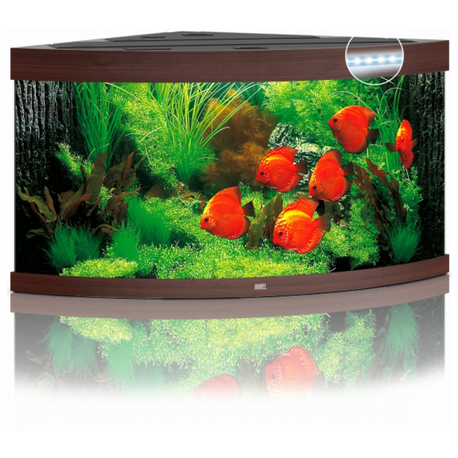 Juwel Aquarium Trigon 350 Led Donker hout