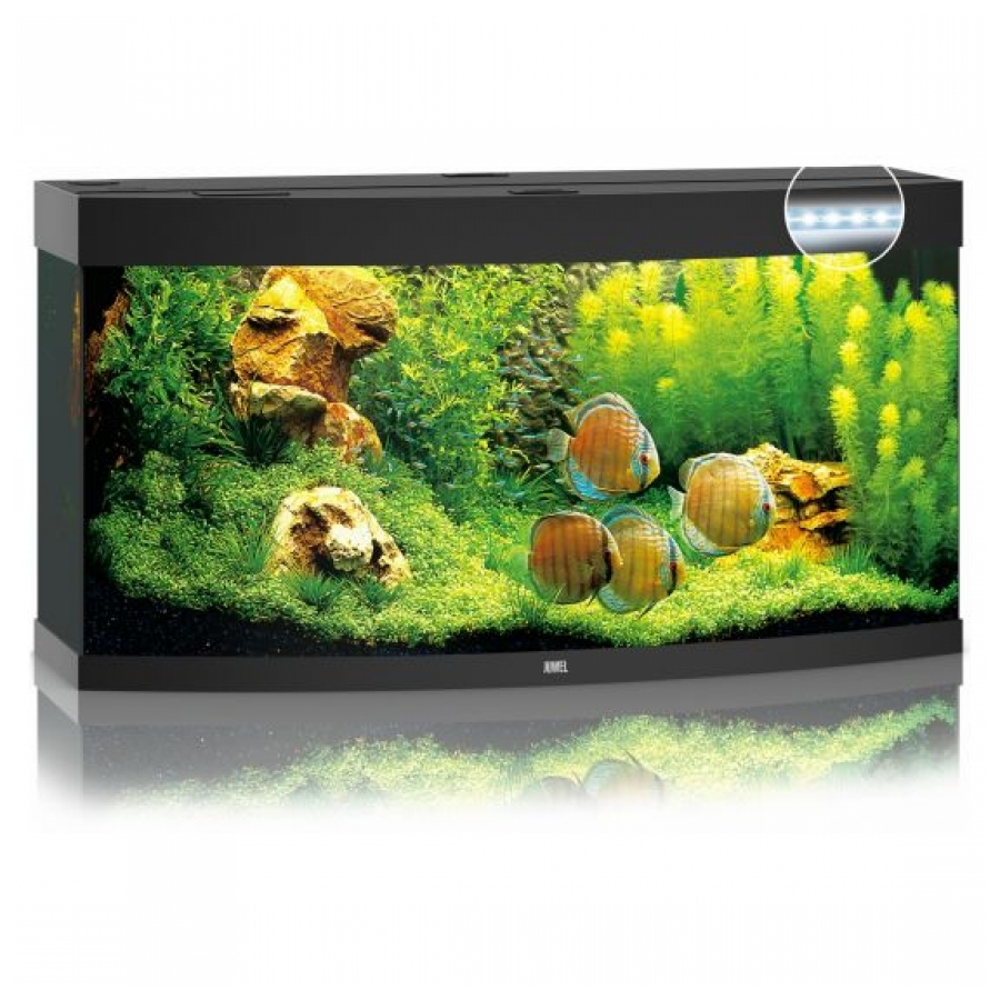 Juwel Aquarium Vision 260 Led Zwart
