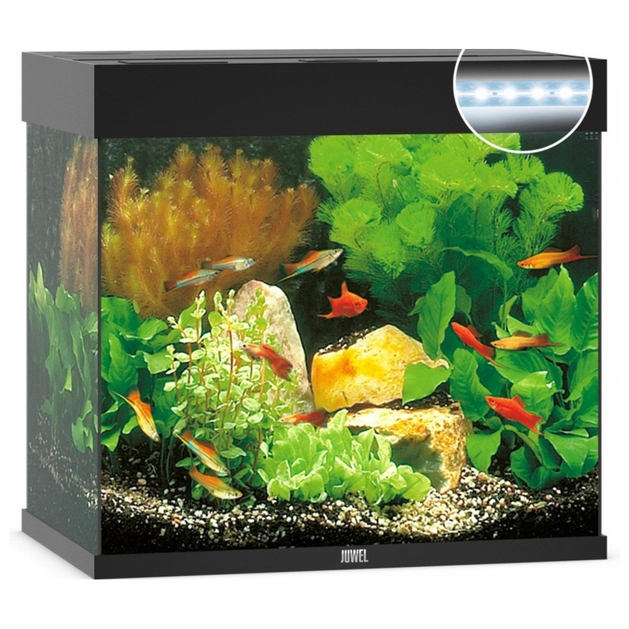 Juwel Aquarium Lido 120 Led Zwart